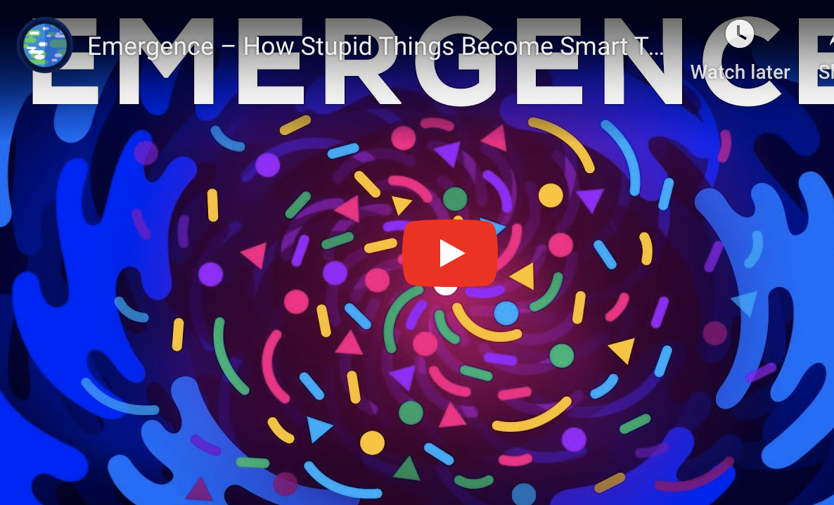 'Emergence' is the 'why' of collective impact